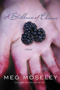 Book - a Stillness of Charms