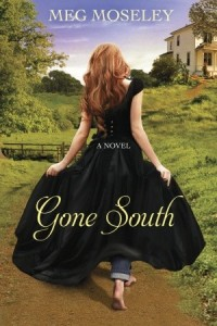 Book - Gone South2